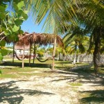 Golden Paradise Hostal & Camping